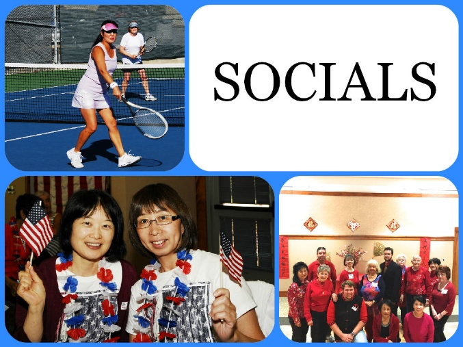 socials  - main page picture