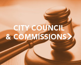 City Council and Commissions