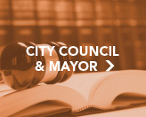 City Council and Mayor