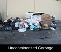 Uncontainerized Garbage